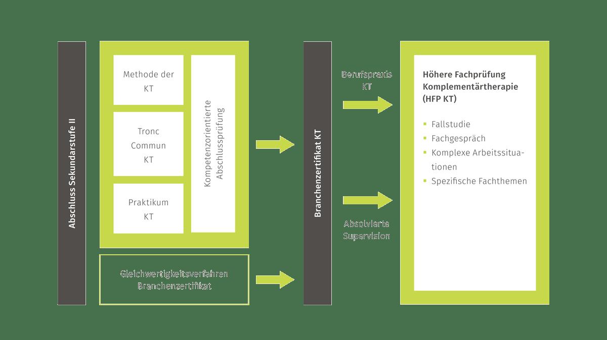 Grafik Ausbildung Komplementärmedizin